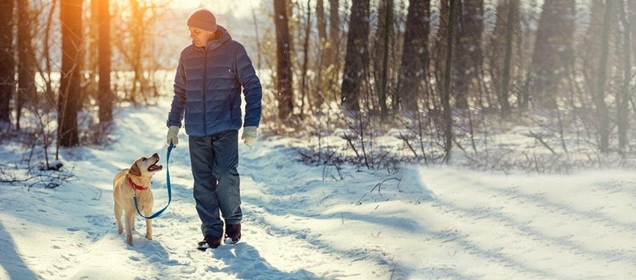 winter exercise ideas Metropolis Healthcare